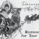 Harnessing the Power of Microcontent for Your Blog